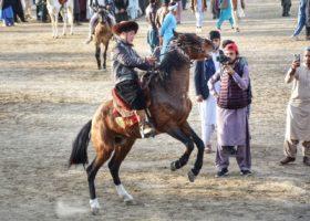 horse race show